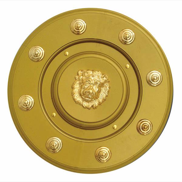 Štít se zlatým emblémem