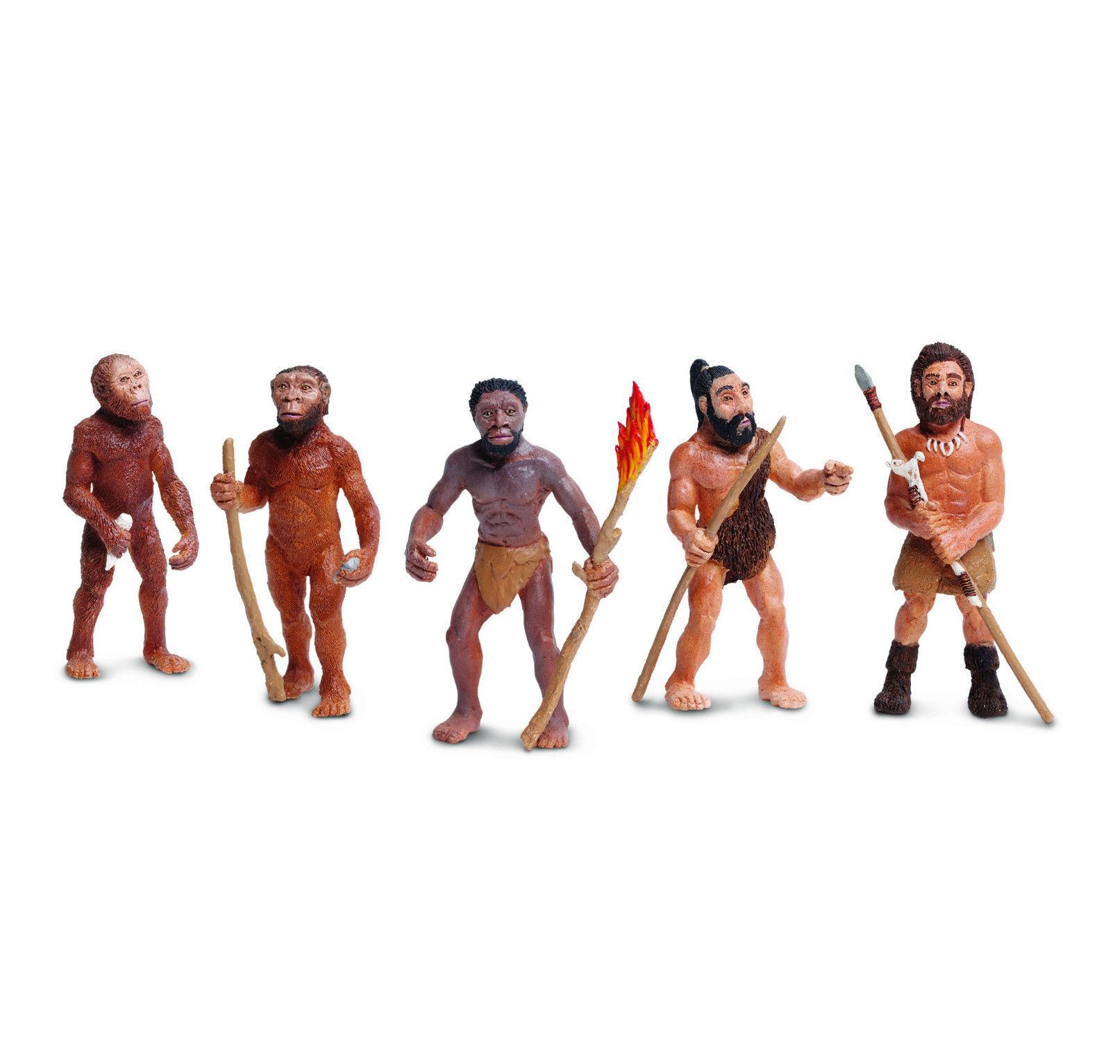 Safari Ltd. - Vývoj člověka